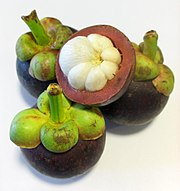 Mangosteen.jpeg