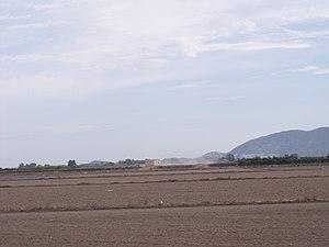 Marjal i Estany de la Ribera Sud del Xúquer 02.JPG