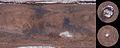 Mars Viking MDIM21 1km plus poles.jpg