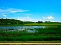 Marsh off Highway 19 - panoramio.jpg