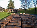 Massed oak barrels - geograph.org.uk - 286752.jpg