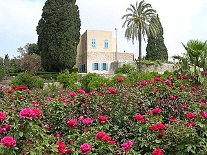 Mazra'a - Image: Mazraih House Roses