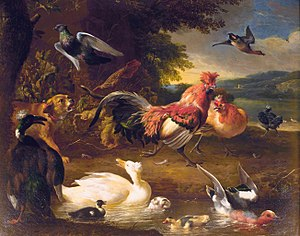 Brabanter - A painting by Melchior d'Hondecoeter, apparently showing a Brabanter cock and hen