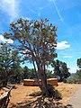 Mesa Verde National Park-24.jpg