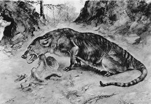 Mesonychidae - Restoration of Mesonyx