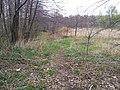 Mikolow, Poland - panoramio (108).jpg