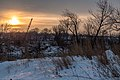 Mississippi River from North Mississippi Regional Park - Winter Sunrise (24632985709).jpg