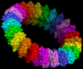 Molecular model of the pre-pore form of a MACPF protein based upon the structure of pneunolysin.png
