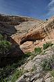 Monarch cave ruin.jpg