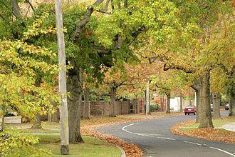 Canterbury, Victoria - Monomeath Avenue
