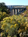 Monroe Street Bridge and Autumn Colors - Spokane WA - USA.jpg
