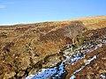 Moorland and Burn in upper Glen Beich - geograph.org.uk - 714322.jpg
