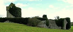Moorstown Castle March 2011.JPG