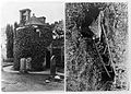 Mortsafes in churchyard Wellcome L0012138.jpg