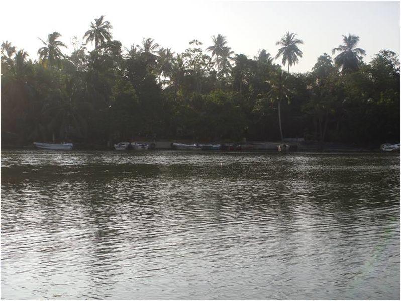File:Motor boats park Koggala.jpg