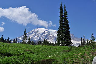 Mount Rainier from Paradise meadow, August 2014 - 03.jpg