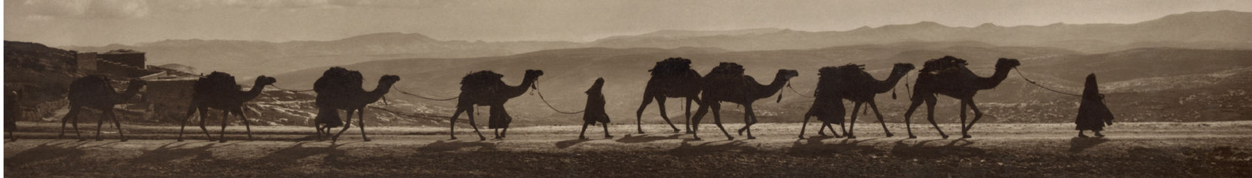 Egyptian camel transport passing over Mount of Olives, 1918