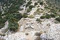 Muro este de Castellar de Meca 01.jpg