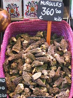 Spugnole in vendita in un mercato spagnolo di Barcellona