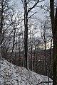 Na Servátke - panoramio.jpg