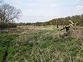 Narrow field west of Nunley Farm - geograph.org.uk - 1803544.jpg