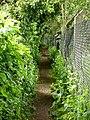 Narrow footpath - geograph.org.uk - 1292456.jpg