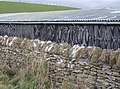 Natural art - geograph.org.uk - 620603.jpg