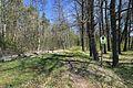 Naturschutzgebiet Höhlteich in Oelsnitz. Erzgebirgskreis..2H1A1137WI.jpg