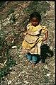 Nepal (28252950205).jpg