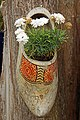 Netherlands-4329 - Clogs don't die, they become planters... (11995110236).jpg