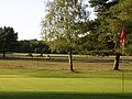 New Forest Golf Club, Lyndhurst - geograph.org.uk - 45516.jpg