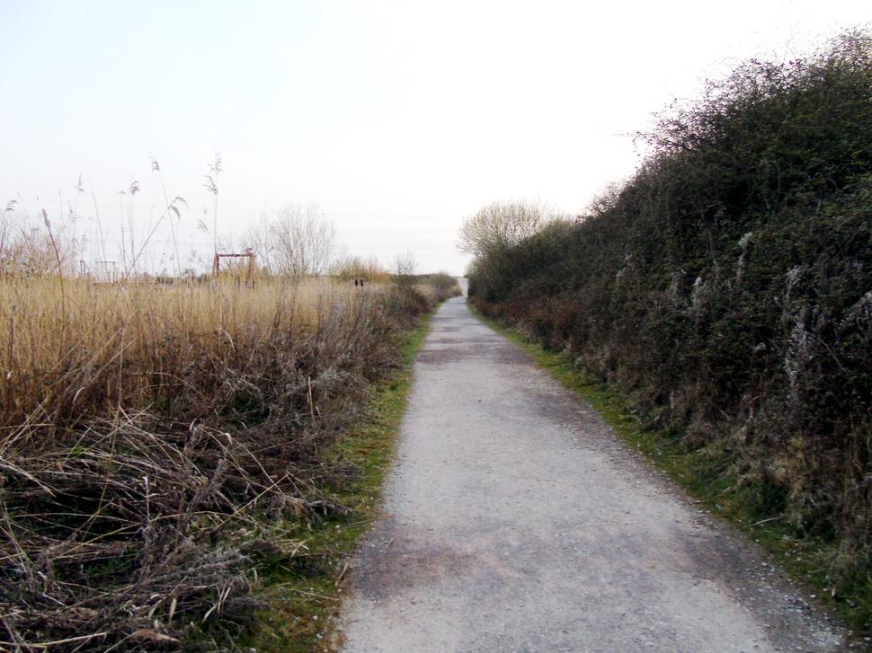 Newport Wetlands RSPB Reserve Approaching Entrance