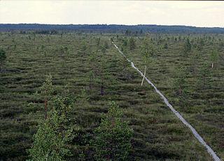 Nigula Nature Reserve