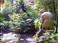 Ninfa-botanico-Malaga.jpg