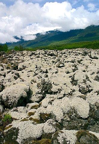 Nisga'a Memorial Lava Bed Provincial Park - Nisga'a Memorial Lava Bed Provincial Park