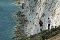 No way down there - geograph.org.uk - 1378884.jpg