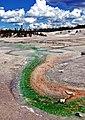 Norris Geyser Basin, Yellowstone 2011 (16250387397).jpg