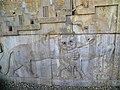 Northern staircase of Tripylon Persepolis 2014 (3).jpg