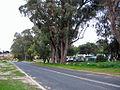 OIC carine caravan park 3.jpg
