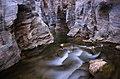 Ob Khan National Park 2.jpg