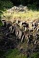 Oberlausitz 2012-05-26-7249.jpg