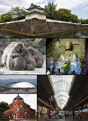Ōita, Ōita - From top left: Funai Castle, Monkeys in Mount Takasaki, Motomachi Stone Buddhas, Oita Stadium, Old Oita Bank, Shopping street in central Oita
