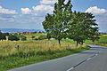 Okrouhlá ze silnice od Benešova, okres Blansko.jpg