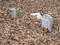 Old Nonconnah MB Church Cemetery Memphis TN 005.jpg