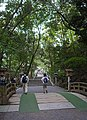 Omiwa jinja shrine , 大神神社 - panoramio (7).jpg
