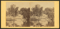 On Catawissa Island, Catawissa, Pa. (View along the banks of the river.), by Moran, John, 1831-1903.png
