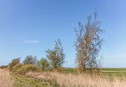 Onverhard pad aan begin van Blokslootpolder. 17-04-2020. (actm.) 01.jpg