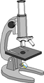 Optical Microscope.png