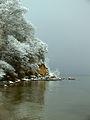 Osłonino. Zima nad Zatoką Pucką 1.jpg