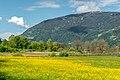 Ossiach Alt-Ossiach Bleistätter Moor und Gerlitzen 23052019 6977.jpg